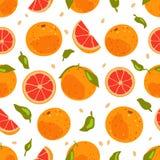 Modèle sans couture de fruit tropical de pamplemousse illustration stock