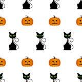 Modèle sans couture de Halloween avec des potirons, chat noir Images libres de droits