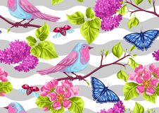 Modèle sans couture de jardin de ressort Illustration naturelle avec la fleur de fleur, la birdie de merle et le papillon Photographie stock libre de droits