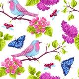 Modèle sans couture de jardin de ressort Illustration naturelle avec la fleur de fleur, la birdie de merle et le papillon Photographie stock