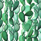 Modèle sans couture de jardin tropical de cactus d'aquarelle illustration de vecteur