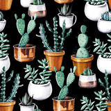 Modèle sans couture de jardin tropical de désert de cactus d'aquarelle Modèle pour aquarelle de cactus photo stock