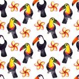 Modèle sans couture de la nature hyperrealistic d'aquarelle des tropiques des toucans noirs et blancs et colorés de l'Asie - et d illustration libre de droits