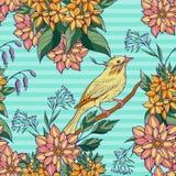 Modèle sans couture de la séance colorée d'oiseau Images stock
