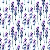 Modèle sans couture de lavande d'aquarelle Modèle pour le tissu, le papier et d'autres impression et projets de Web Fond d'aquare