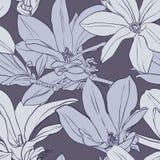 Modèle sans couture de magnolia grise de vintage Photo libre de droits