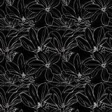 Modèle sans couture de magnolia noire et blanche Images libres de droits