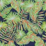 Modèle sans couture de palmettes tropicales grunges, fond floral de jungle gratuite de style pour des T-shirts, vêtements Photographie stock