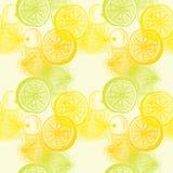 Modèle sans couture de papier peint avec l'agrume tiré par la main d'oranges Drawi Image stock