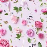 Modèle sans couture de papier peint des fleurs roses Photos libres de droits