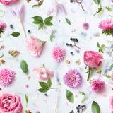 Modèle sans couture de papier peint des fleurs roses Images libres de droits