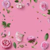 Modèle sans couture de papier peint des fleurs roses Photo stock