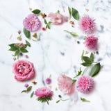 Modèle sans couture de papier peint des fleurs roses Image stock