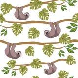 Modèle sans couture de paresses, modèle tropical de répétition de jungle pour la conception de textile, copie de tissu, mode ou f illustration libre de droits