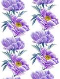 Modèle sans couture de pivoines lilas Images libres de droits