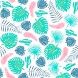 Modèle sans couture de plantes tropicales avec des feuilles et des cactus Photographie stock