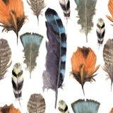 Modèle sans couture de plume vibrante tirée par la main d'aquarelle Style de plume de Boho Illustration sur le blanc Desig de mou Photos libres de droits