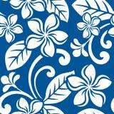 Modèle sans couture de Plumeria d'île Photos stock