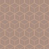 Modèle sans couture de polygone géométrique Conception graphique de mode Illustration de vecteur Conception de fond Illusion opti Photographie stock