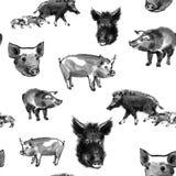 Modèle sans couture de porc de sumi-e illustration libre de droits