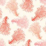 Modèle sans couture de récif coralien Image stock