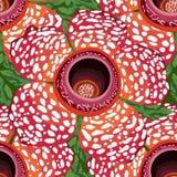 Modèle sans couture de Rafflesia illustration de vecteur