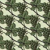 Modèle sans couture de raisin vert Images stock