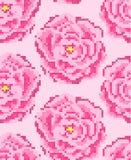 Modèle sans couture de roses croisées de point Images stock