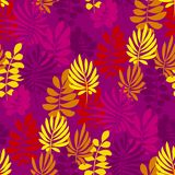 Modèle sans couture de safari de fleur abstraite de style Image libre de droits