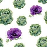 Modèle sans couture de succulents d'aquarelle et de fleurs d'anémone sur le fond blanc Texture florale pour la conception, le tex Image stock