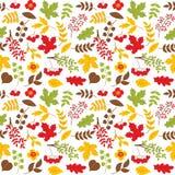Modèle sans couture de vecteur avec Autumn Colorful Leaves et les baies rouges Image libre de droits