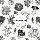 Modèle sans couture de vecteur avec des champignons Fond tiré par la main avec différentes sortes fongueuses Calibre de bannière  Photos stock