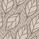 Modèle sans couture de vecteur avec des feuilles de griffonnage Photos stock