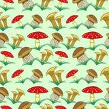 Modèle sans couture de vecteur avec des légumes, fond avec des champignons de plan rapproché et herbe : agaric de mouche, chanter Photographie stock