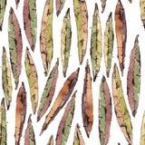 Modèle sans couture de vecteur avec l'aquarelle Willow Leaves Photographie stock libre de droits