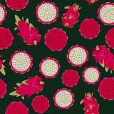Modèle sans couture de vecteur avec la chair rouge et dragonfruits blancs de chair sur le fond foncé illustration de vecteur