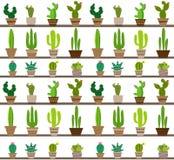 Modèle sans couture de vecteur avec le cactus différent Images libres de droits
