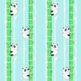 Modèle sans couture de vecteur avec le petit panda mignon illustration de vecteur