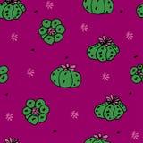Modèle sans couture de vecteur avec le peyotl de cactus Images libres de droits