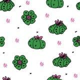 Modèle sans couture de vecteur avec le peyotl de cactus Photo libre de droits