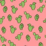 Modèle sans couture de vecteur avec le pois épineux de cactus Image libre de droits