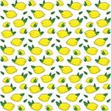 Modèle sans couture de vecteur avec les citrons tirés Photo stock