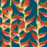 Modèle sans couture de vecteur avec les fleurs tropicales vives photographie stock libre de droits