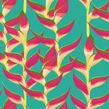Modèle sans couture de vecteur avec les fleurs tropicales vives photographie stock
