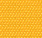 Modèle sans couture de vecteur avec les nids d'abeilles brillants Photo stock
