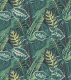 Modèle sans couture de vecteur avec les palmettes tropicales, usines de jungle illustration libre de droits