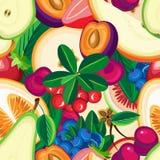 Modèle sans couture de vecteur décoratif de fruit Images stock