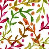 Modèle sans couture de vecteur d'aquarelle avec les feuilles d'automne colorées Photographie stock libre de droits