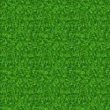 Modèle sans couture de vecteur d'herbe verte Photos stock