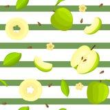 Modèle sans couture de vecteur de fruit lumineux Fond rayé avec les pommes vertes Delicious Images libres de droits